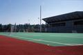 Hayward Field, University of Oregon (Eugene, Oregon)