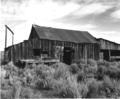 Blacksmith Shop, Shirk Ranch (Adel, Oregon)