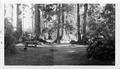 View of 2 campsites with small animal. (composite of 2 negatives)