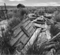Root Cellar, Shirk Ranch (Adel, Oregon)