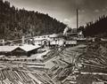 Sawmill on Siuslaw River with wigwam in background, log pond in front