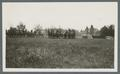 Horse-drawn caisson with limbers in line on parade field, circa 1920