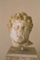 Head of Diomedes from theft of Palladion